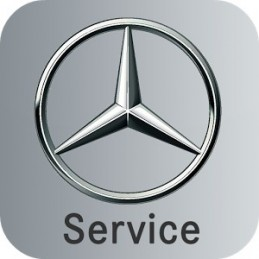 Mercedes - maintenance function via the ASSYST PLUS steering wheel