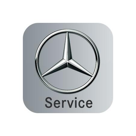 Mercedes - maintenance function via the ASSYST PLUS steering wheel